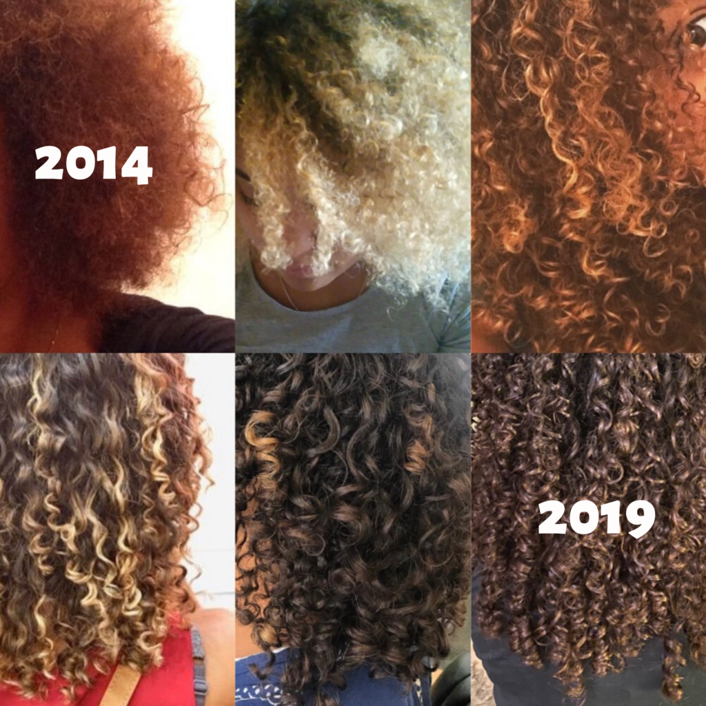 evolution-2014-2019